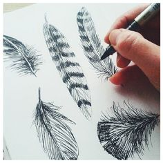 Feathers for #inktober today. #inktober2015, #drawing, #illustration, #feathers, #sketchbook, #blackpen, #uniball, #sketching, #doodling.
