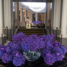 London Corinthia Hotel   #flowers #Friday #FridayFlowers #FF #purple #Reception #welcome #LondonHotels #corinthiahotels #corinthialondon #corinthiamoments #beautiful #BankHoliday #TGIF #itstheweekend