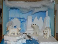 Continent Study: Antarctica verses the Arctic