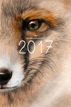 Illustratrice naturaliste & dessin animalier: Très belle année 2017
