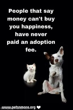 Be kind to animals please and adopt one or pay the adoption fees for someone who cannot afford it! I Love Dogs, Puppy Love, Funny Animals, Cute Animals, Adoption, Amor Animal, Stop Animal Cruelty, Tier Fotos, Animal Quotes