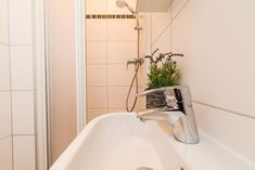 Booking.com: Ferienwohnung checkVIENNA – Enenkelstrasse , Wien, Österreich - 285 Gästebewertungen . Buchen Sie jetzt Ihr Hotel! Vienna Hotel, Holiday Apartments, Bath Caddy, Bathtub, Marble Floor, Nice Apartments, Modern Interiors, Standing Bath