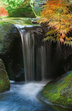 Flowing waterfall in a Japanese garden...