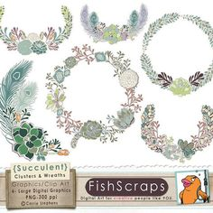 free succulent clipart - Google Search