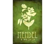 Gregor Mendel 12x18 Steampunk Rock Star Scientist Poster - Pea Plant Genetics  Fine Art Print