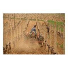 A farmer plows a vineyard wood canvas
