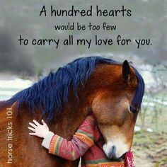 Horse hugging girl. Horse lovers quote. A tribute to all the horses I have had the privilege of owning..