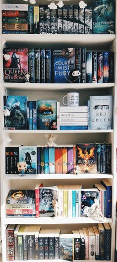 ''Her dearest friends were characters in books.'' I love most of those books! I want this book shelf