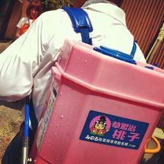 @kitao777 「モモコクラブ。 #jidori0610 #hofu #yamaguchi」