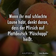 Wenn ihr mal schlechte Laune habt, denkt daran, dass der If you're in a bad mood, remember that the peach in Low German is called [. Mal Humor, Quotes About Everything, Funny Times, Humor Grafico, Bad Mood, Funny Cute, Laugh Out Loud, Good To Know, Wise Words