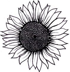 sunflower outline - Google Search
