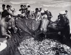 Iwase_Yoshiyuki fishermen - Google zoeken