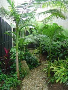 Patio Tropical, Tropical Backyard Landscaping, Small Tropical Gardens, Tropical Garden Design, Small Garden Design, Tropical Plants, Landscaping Ideas, Backyard Decks, Landscaping Melbourne