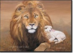 Lion and Lamb laying down.
