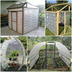 Green house on a budget