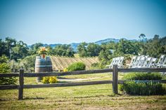 Hanna Winery And Vineyards Weddings Get Prices For Napa Sonoma Wedding Venues In Santa Rosa Ca Christina Artos Pinterest