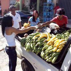 Estampa Dominicana.