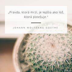 Pravda, ktorá mrzí, je lepšia ako lož, ktorá potešuje. - Johann Wolfgang von Goethe #pravda #lož Bird, Motivation, Space, Free, Quotes, Floor Space, Birds, Inspiration