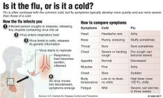 Amanda Blain - Google+ - *The Difference Between A Cold And A Flu* I never can…