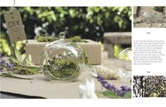 #DIY terrarium ornament from the @Brandon Green Tree Boutique #hAAppyholidays