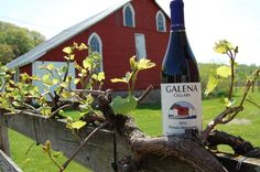 Galena Cellars Vineyard, 4746 North Ford Road in Galena, Illinois