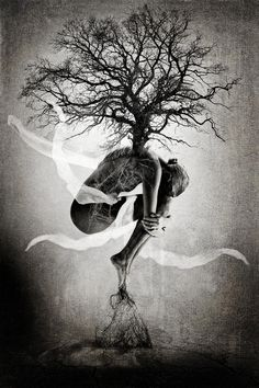 Trademark Global Erik Brede 'Tree of Life' Canvas Art - 22 x can find Tree of life and more on our website.Trademark Global Erik Brede 'Tree of Life' Canvas Art - 22 x 32 Tree Of Life Artwork, Tree Art, Art Of Life, Tree Of Life Painting, Kunst Online, Online Art, Abstract Photos, Abstract Art, Éphémères Vintage