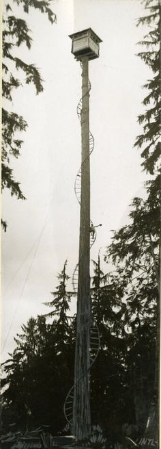 Fire lookouts, various locations in Oregon, Washington and Idaho, The Timberman Magazine Photographs Collection, Org. Yurt Home, Hunting Stands, Firefighter Pictures, Lookout Tower, Open Staircase, Cabin Design, Brickwork, Small Gardens, The Great Outdoors
