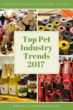 Top Pet Industry Trends for 2017 from the Global Pet Expo - Popular and new dog products