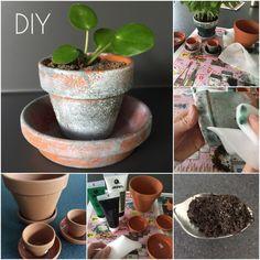 DIY Flower Pots with Sostrene Grene