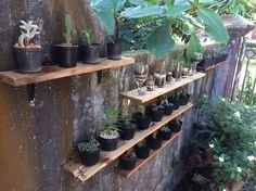 mini wall garden
