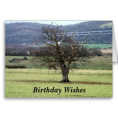 >>>The best place          	Birthday Wishes Card           	Birthday Wishes Card in each seller & make purchase online for cheap. Choose the best price and best promotion as you thing Secure Checkout you can trust Buy bestReview          	Birthday Wishes Card today easy to Shops & Purchase Onl...Cleck See More >>> http://www.zazzle.com/birthday_wishes_card-137607115072639574?rf=238627982471231924&zbar=1&tc=terrest