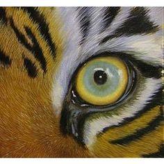 Close up animal eyes, a drawing idea?