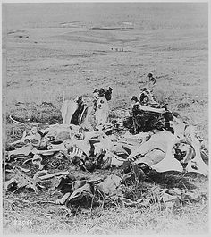 Custer's Last Stand, one year after the massacre. American Indian Wars, Native American History, Native American Indians, Battle Of Little Bighorn, American Frontier, Le Far West, Military Art, Military History, Historical Pictures
