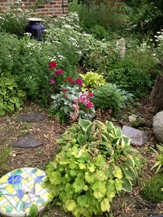 Mary Homann's Stepping stone in shade garden