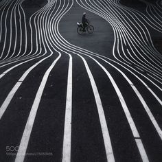 Lines lines lines by CarlJohanJohansson Beauty Photography, Amazing Photography, Kids Learning Apps, Great Pic, Photo B, Olympus Digital Camera, Great Shots, Line, Black And White