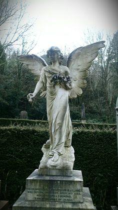 Taken at Arnos Vale Cemetery, Bristol.