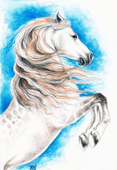 Rearing Andalusian Horse by Evey Studios