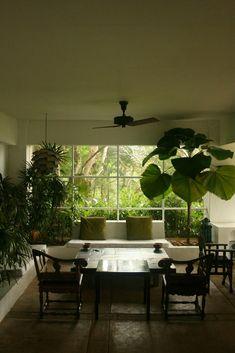inspirational guide : Geoffrey Bawa's garden... | under the mango tree