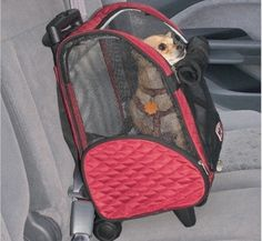 Snoozer Pet Dog Cat Puppy Car SUV Travel Carrier Backpack With Rolling Casters LargeRed Pet Travel Carrier, Cat Carrier, Pet Dogs, Dogs And Puppies, Pets, Dog Kennels For Sale, Airline Approved Pet Carrier, Cool Dog Houses, Pet Collars