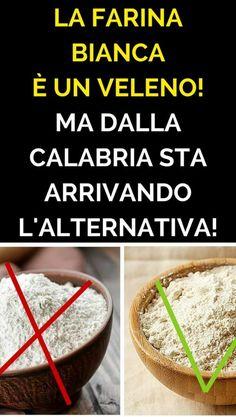 Sapevi che la farina bianca, quella che compri al supermercato, è un alimento assolutamente non sano e dannosissimo per la nostra salute? La farina bianca è processata e raffinata, usando tecniche ed aggiungendo sostanze chimiche che sono molto pericolose per il nostro organismo. Non basta non acquistare farina: pasta, pane, merendine, dolci, sono tutti prodotti preconfezionati che hanno come ingrediente la farina bianca e raffinata. In Calabria è nato un progetto che ci offrirà…