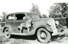 """""""Lady"""" in 1934. """"...she always rode on the running board of the car"""" from a letter written by the daughter of RCMP Cst. James Harkness.The formal RCMP Dog Service started in 1935, but """"from 1908 to 1935 members occasionally used privately owned dogs to assist them in their investigations"""""""
