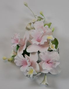 Cooktown Orchid Spray - Pink w/Wire Floral Sprays