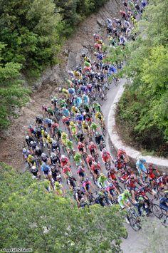Giro 2014 - 7 (211km, Frosinone- Foligno) : Le peloton