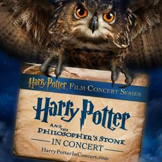 Harry Potter and the Sorcerer's Stone in Concert Enchants Seattle - Equality 365 Entertainment News Philosophers Stone, The Sorcerer's Stone, Harry Potter Film, Get Tickets, Enchanted, Seattle, Entertaining, Shit Happens, Animals