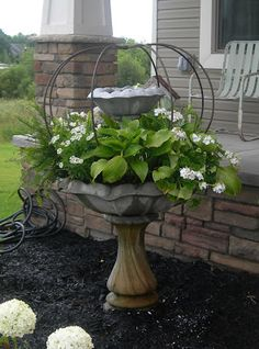 Container Gardening Ideas Since my fountain gives us so much trouble. maybe I'll transform it a bit. hosta, fern, white geranium and who knows what I'll add. Bird Bath Planter, Garden Planters, Fall Planters, Fountain Garden, Bird Bath Garden, Container Plants, Container Gardening, Succulent Containers, Gardening Tools