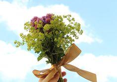 Tak tuhle netradiční kytici nesl můj synek své kamarádce k narozeninám. Pažitkové květy a kontryhel.
