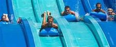 Image Search Results for wild amusement park ride Amusement Park Rides, Yahoo Images, Summer Fun, Detective, Childhood Memories, Image Search, Adventure, World, Adventure Movies