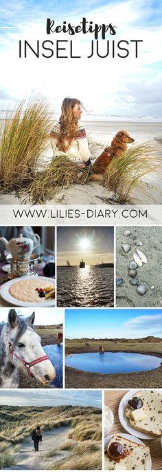 Urlaub an der Nordsee - 7 Tipps für eine unvergessliche Zeit auf der Insel Juist. Dazu gehören Spaziergänge am Strand, eine Wattwanderung, ein Rosinenstuten in der Domäne Bill, eine Kanne Ostfriesen Tee, die Dünen, die Weite, Strandkörbe im Sand und wenn man Glück hat auch die ein oder andere Robbe! Juist ist eine autofreie Insel in der Nordsee. Alle Infos und Tipps findet ihr auf www.lilies-diary.com.