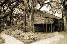 Old barn at Rosedown Plantation in St Francisville, LA