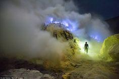 Image result for sulfur miner kaweh ijen heavy load -sulfur